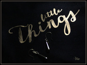 17th Sep 2019 - little things.....