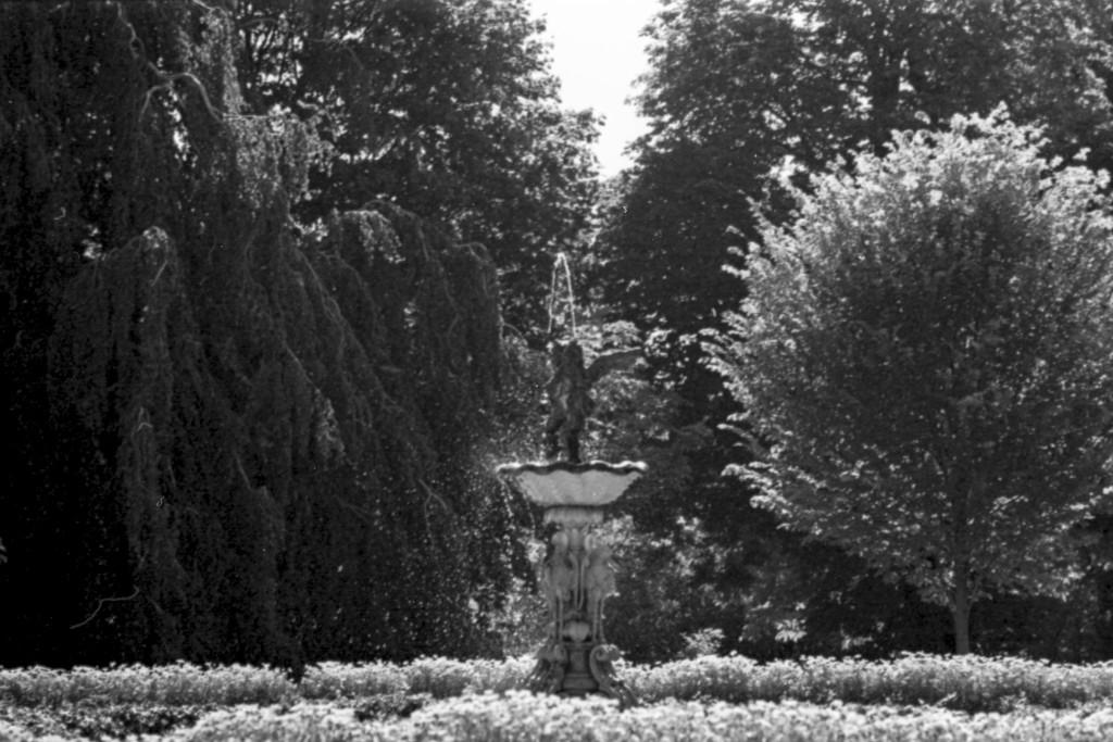Rosecliff fountain by domenicododaro