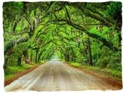 17th Sep 2019 - Road to Botany Bay