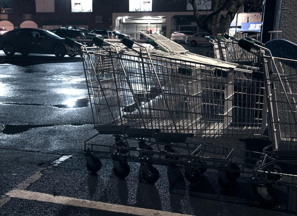 trolleys at night by fr1da