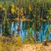 Jewel Toned Lake by mgmurray