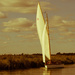 Yachting at Thurne by peadar