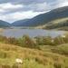 Lochs Doine and Voil