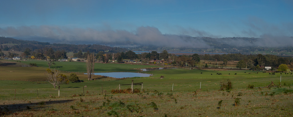 Countryside-Huon Valley by gosia