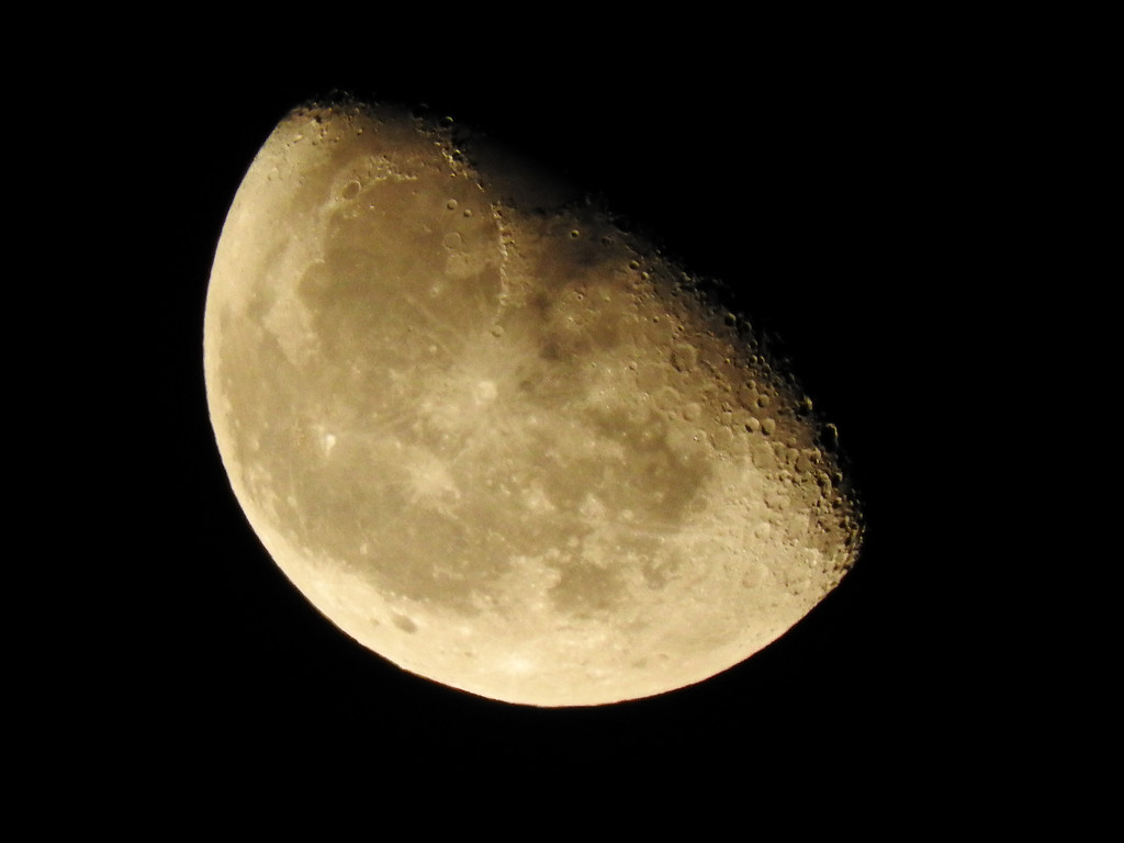 Last moon by homeschoolmom