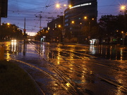 20th Sep 2019 - Rainy morning