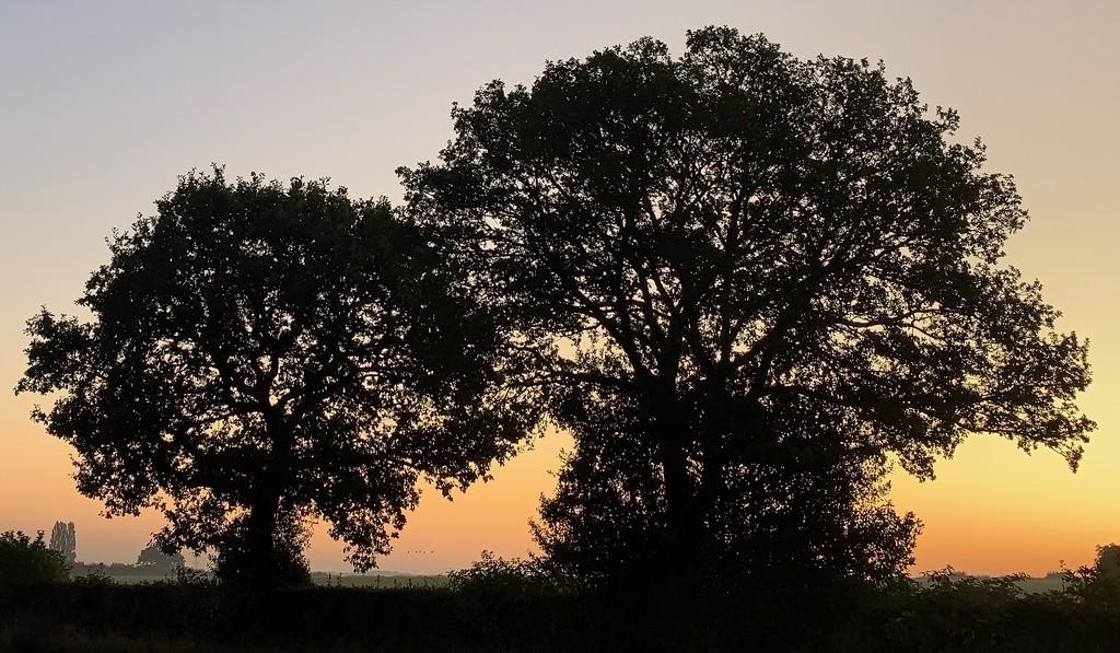 Sunrise by tinley23