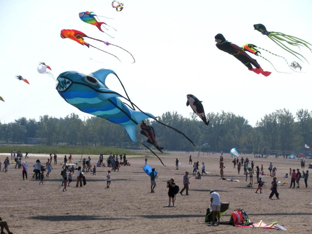 Kite Flying - Lake Ontario by bruni