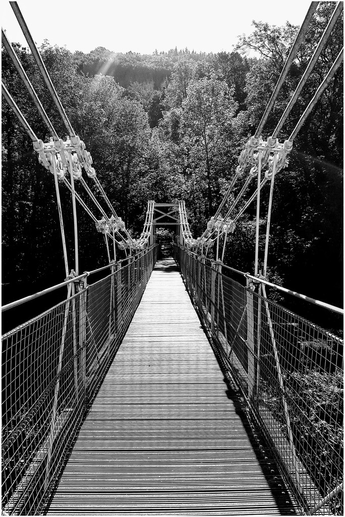The chainbridge near Horseshoe Falls by lyndamcg