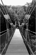 24th Sep 2019 - The chainbridge near Horseshoe Falls