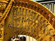 24th Sep 2019 - An Angel's Harp