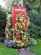 17th Aug 2019 - Flower Box