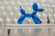 26th Sep 2019 - (Day 225) - Big Blue Balloon Dog