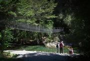 22nd Sep 2019 - Pine Valley Swing bridge
