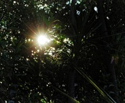 26th Sep 2019 - Solar flare