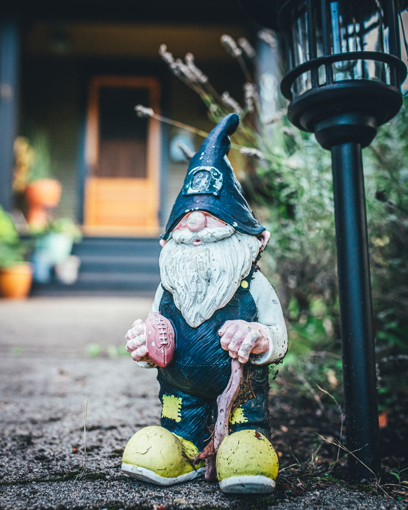 Guard'n Gnome by mamazuzi