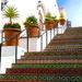 "The ""Spanish Steps"" of Santa Barbara by redy4et"