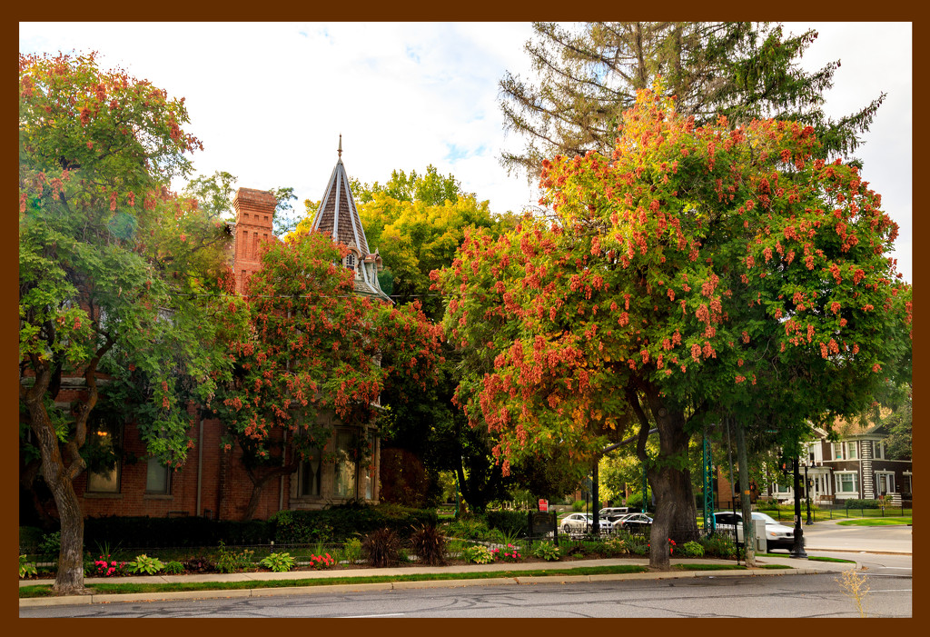 Autumn coming to Salt Lake City by hjbenson