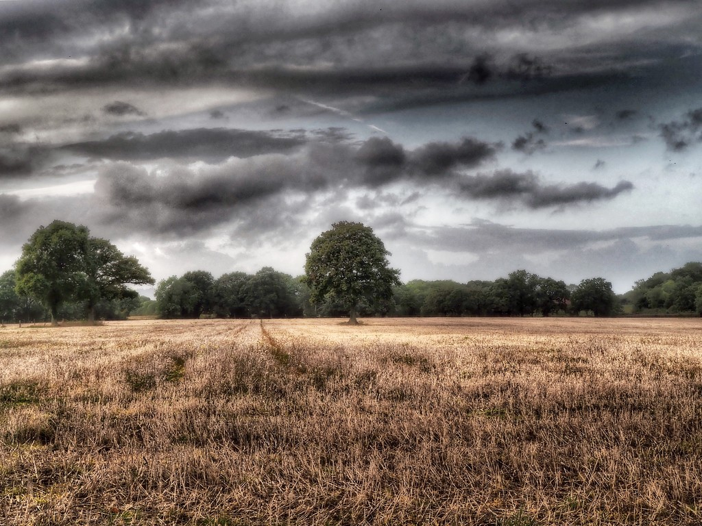 Changeable  by suesmith