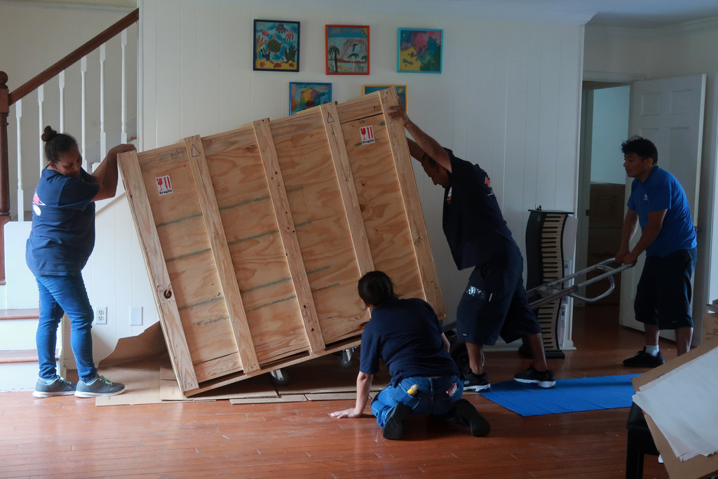 Moving the piano in Houston by ingrid01