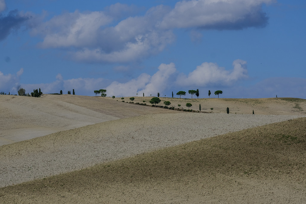Crete Senesi by caterina