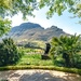 A view of Simonsberg  by ludwigsdiana