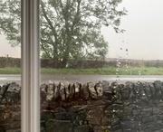 1st Oct 2019 - It's raining again!!