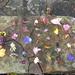 flower grid!