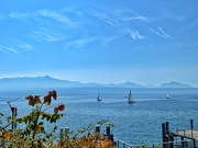 2nd Oct 2019 - Sailing on lake Leman.