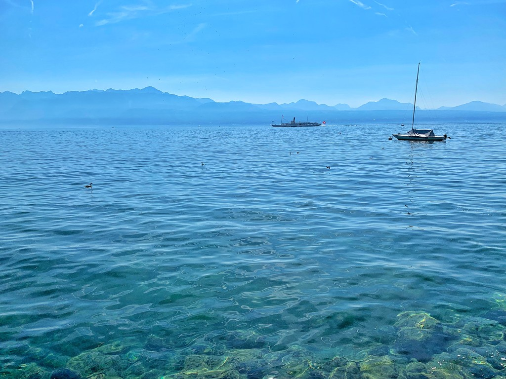 Two boats on the lake Leman.  by cocobella