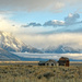 Sunrise in the Tetons by danette