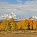 Autumn meets winter by danette