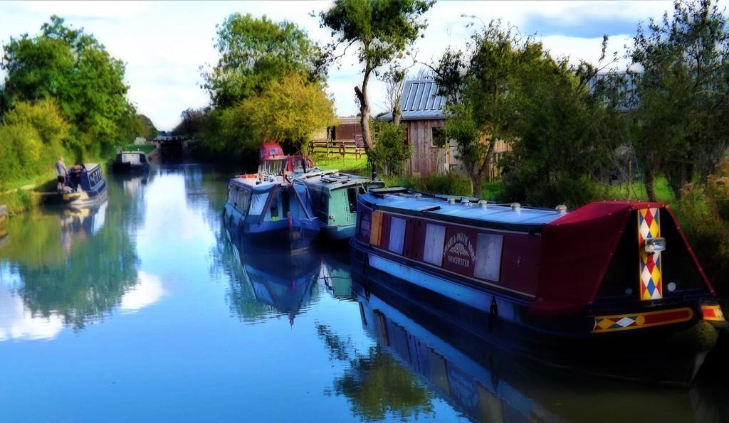 Waterside Delight  by ajisaac