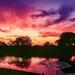 Finally we had a dramatic sunset! by ludwigsdiana