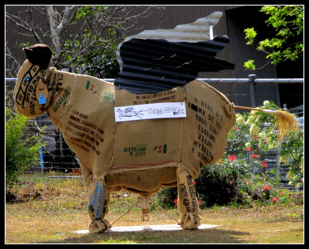 Potatoe bag Flying bull, in the Mary Valley by 777margo