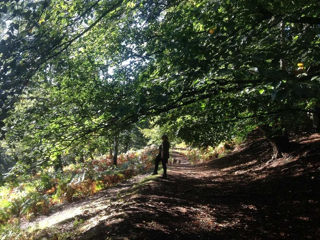 Autumnal riverdance by sabresun