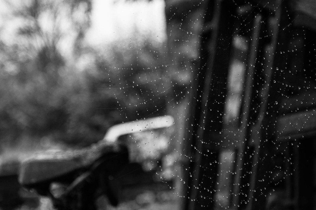 Down came the rain... by overalvandaan