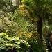 Elford Walled Garden