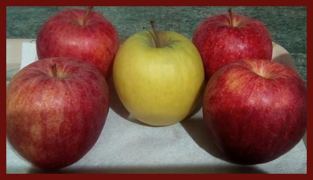 Five Apples by grace55