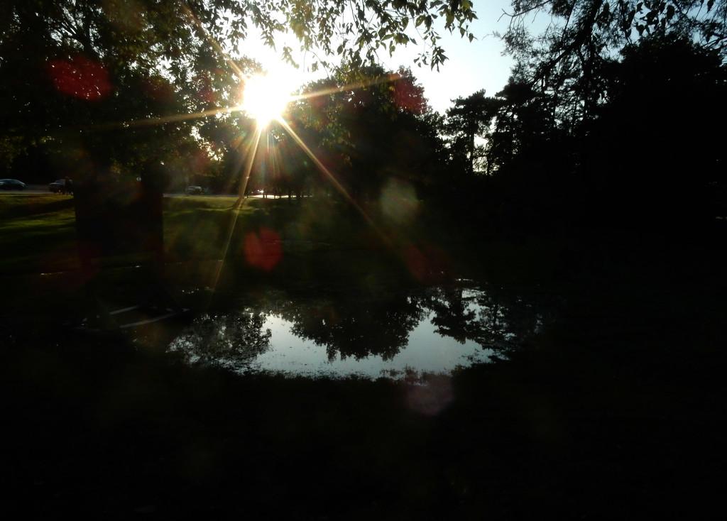 Dirty lens by mcsiegle