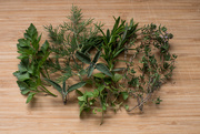 7th Oct 2019 - all the herbs
