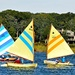 Yellow and blue Beetle catboats