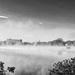 Mist in BW