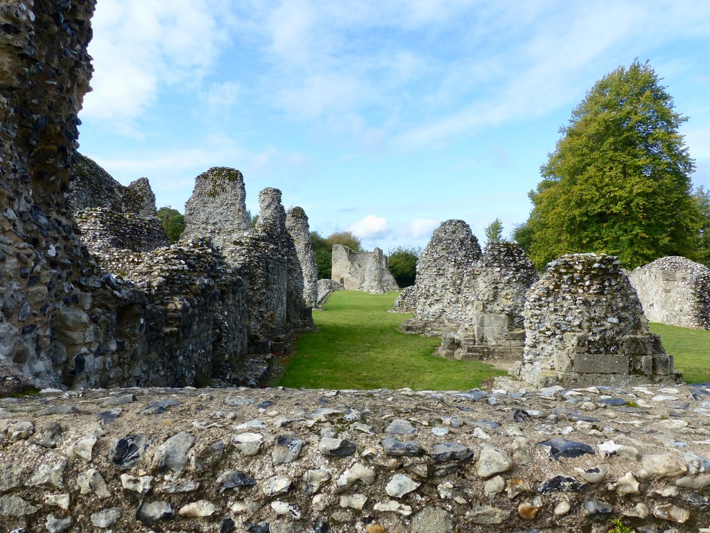 Thetford Priory Ruins by foxes37