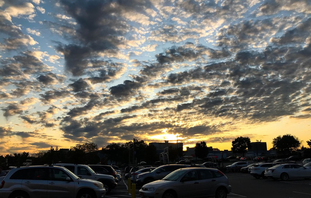 Sky at the supermarket by mittens