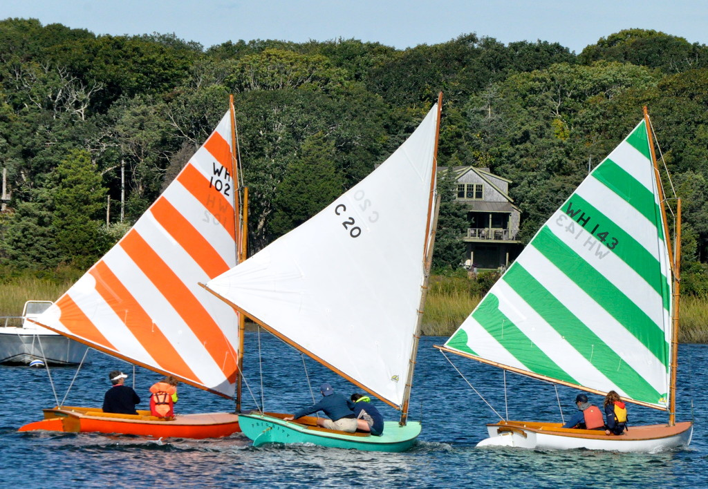 Trio of Beetle catboats by sailingmusic