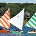 Trio of Beetle catboats