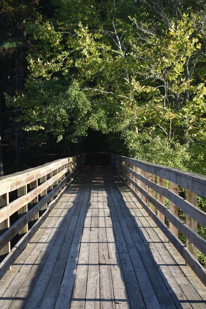 Potential photo spot 3, bridge over lake by homeschoolmom