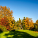 Autumn in the Ringve botanical garden 2
