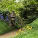Pathway to Hobbiton